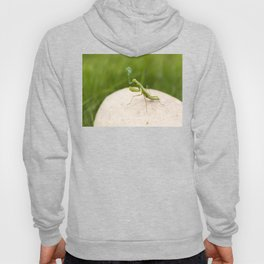 Smoking Praying Mantis Hoody