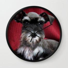 Oreo Schnauzer Puppy Wall Clock