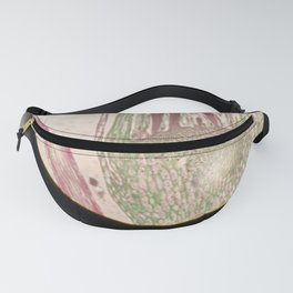 Microscopic View Fanny Pack