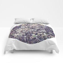 Nature morte Comforters