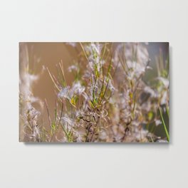 Abstraction the dry grass brown tones of autumn Metal Print