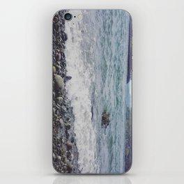 Beach - Whidbey Island, WA iPhone Skin