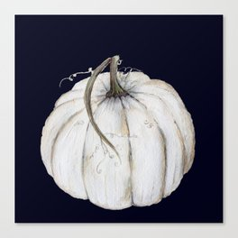 White pumpkin on navy Canvas Print