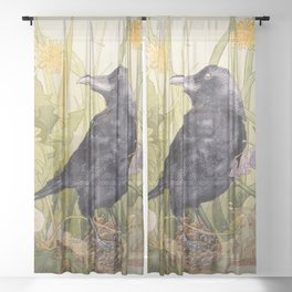 Canuck the Crow Sheer Curtain