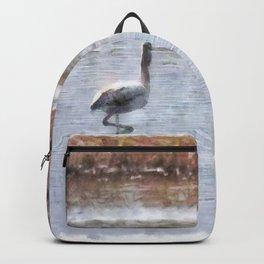 Strike A Pose Backpack