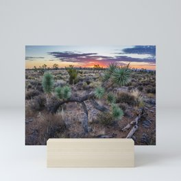 Joshua Tree Forest at Sunrise Mini Art Print