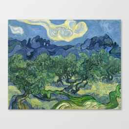 The Olive Trees by Vincent van Gogh Canvas Print