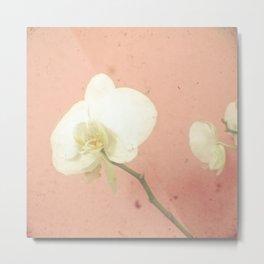 Pale Orchid Metal Print