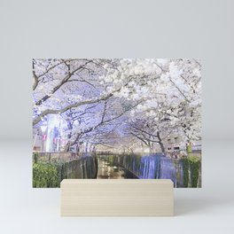 Nakamegruo Sakura Mini Art Print