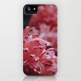 Pink Bellingrath Floral iPhone Case