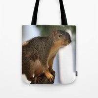 death cab for cutie Tote Bags featuring Cutie! by IowaShots