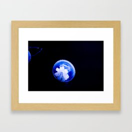 The Light in the Ocean's Darkness Framed Art Print