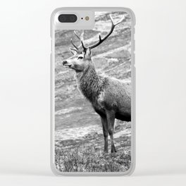 Stag b/w Clear iPhone Case