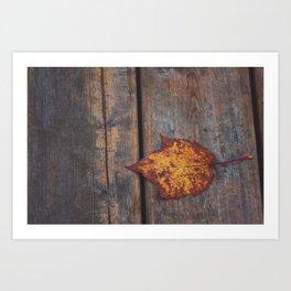 vintage leaf. Art Print