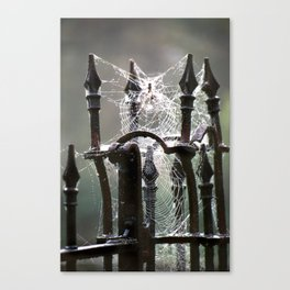 """Tangled Webs"" jjhelene design Canvas Print"