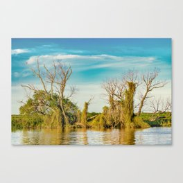 Parana River, San Nicolas, Argentina Canvas Print