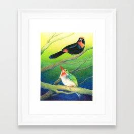 Puerto Rican Tody/Bullfinch Framed Art Print