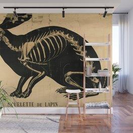 Squelette de lapin Wall Mural