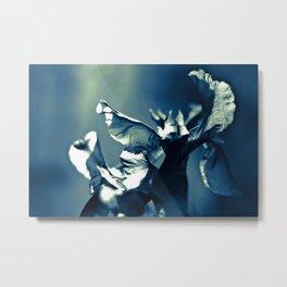 Serie Azul Metal Print