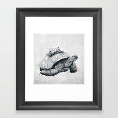 Tortoise Tree - Fall Framed Art Print