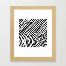 Skin of a zebra Framed Art Print
