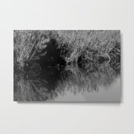 Black and white country pound Metal Print