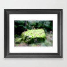 Moss Rock Framed Art Print