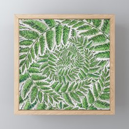 Green Fern leaves circular shape_Hand Painted watercolour & ink Framed Mini Art Print