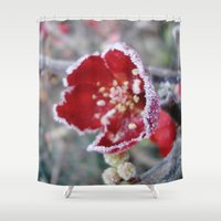 jack frost Shower Curtains featuring Flower in Frost by Nightmare Paradise