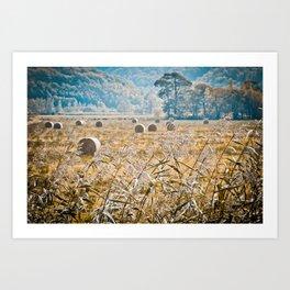 Hay Bales in Snowdonia Art Print