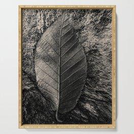 Monochrome leaf by Jean-François Dupuis Serving Tray