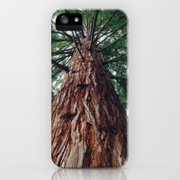 Gracing the magical forest iPhone Case