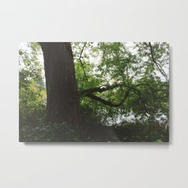 Housatonic Flats XVI Metal Print