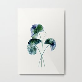 Water lily leaves Metal Print