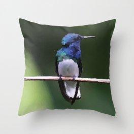 Kolibri Design Ilustration Throw Pillow