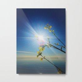 Superior Spring Metal Print