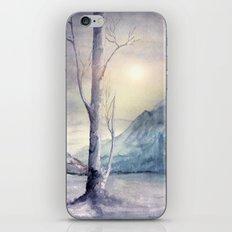 Winter Melody iPhone & iPod Skin