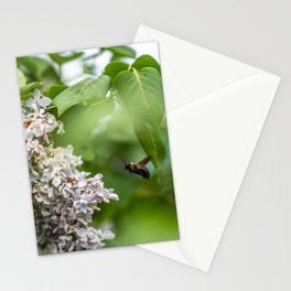 Inspecting the Flowers Stationery Cards