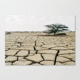 Dry Land Canvas Print