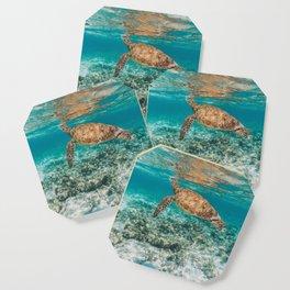 Turtle ii Coaster