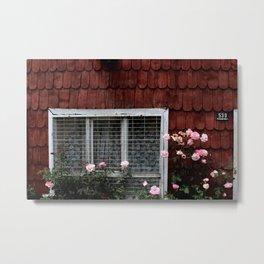 PINK PETALED FLOWER NEAR HOUSE WINDOW Metal Print