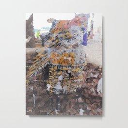 [03.02.17] Búho de la Isla Metal Print