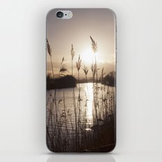 still... iPhone & iPod Skin