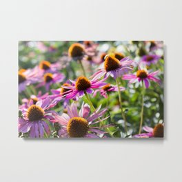 Among the Wildflowers Metal Print