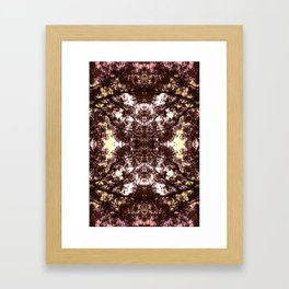 Vetruvian Framed Art Print