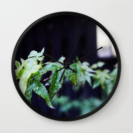 Japanese acer leafs. Wall Clock