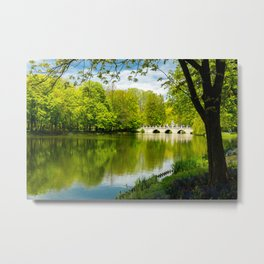 The beauty of the green around Metal Print