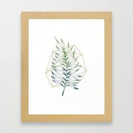 Geometry and Nature I Framed Art Print