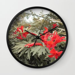 Old red Wall Clock