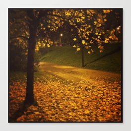Raining Gold Canvas Print
